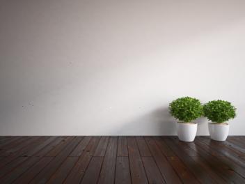 Samolepky na zeď - Život je krátký..