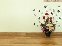 Motýlci dvoubarevní
